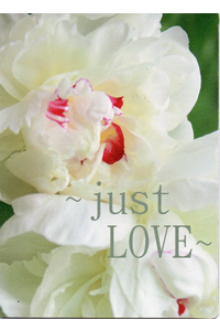 Just love magnet 2000x2769