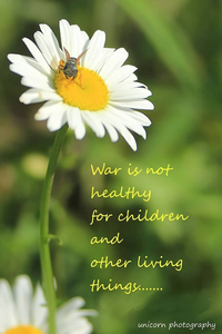 War is not healthly 2000x3000