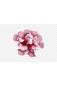 1603723308610 png clipart flower pink flower malvales magenta