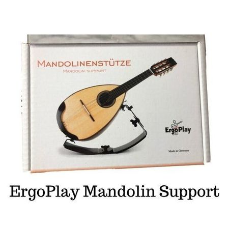 Mandolin support 450